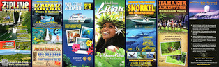 hawaii travel brochures 314x97px