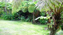 Kilauea Garden Cottage Garden View